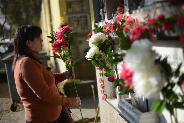 Información sobre eventual apertura del cementerio municipal, en el marco del día de la madre