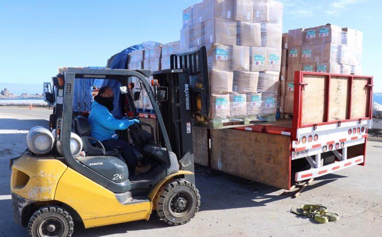 Vecinos de Los Vilos comienzan a recibir las cajas de alimentos comprometidas por el Gobierno