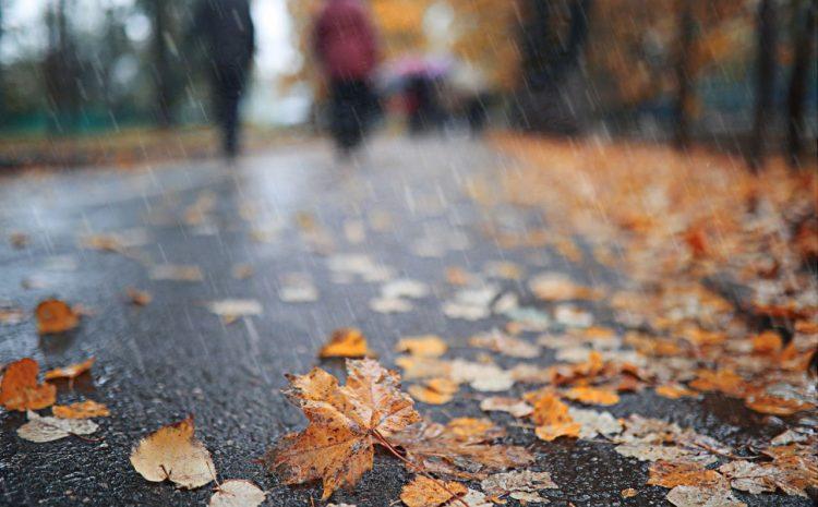 Precipitaciones en gran parte de la provincia de Choapa se esperan para este fin de semana