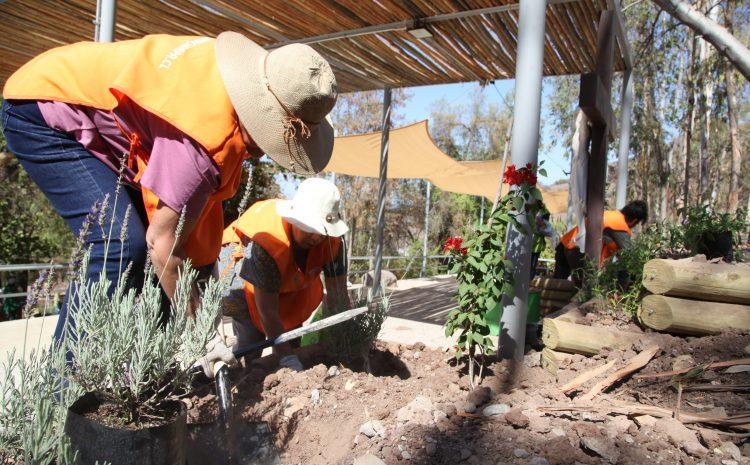 Somos Salamanca inicia proceso de licitación para la construcción de seis espacios públicos para la comuna