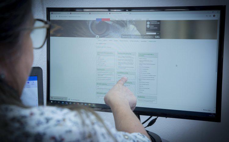 Trámite SAG de autorización de internación de mercaderías silvoagrícolas ahora es digital