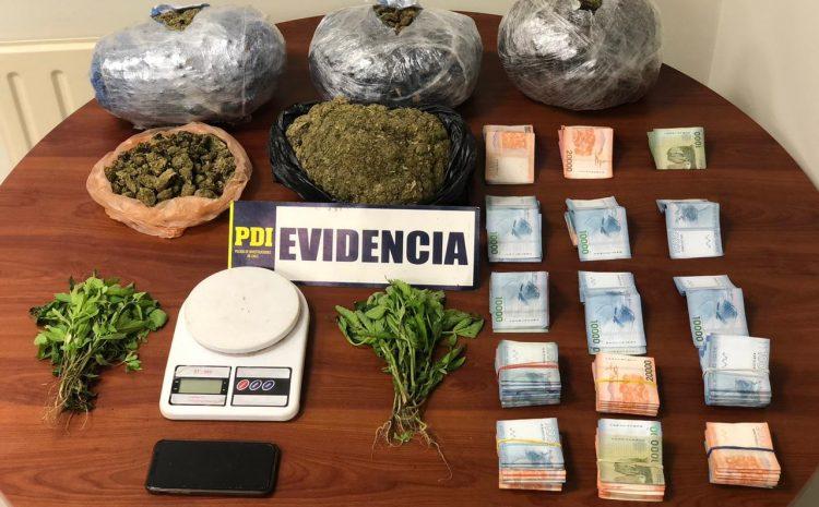 La PDI incautó un cargamento de Cannabis Sativa en control carretero de Los Vilos
