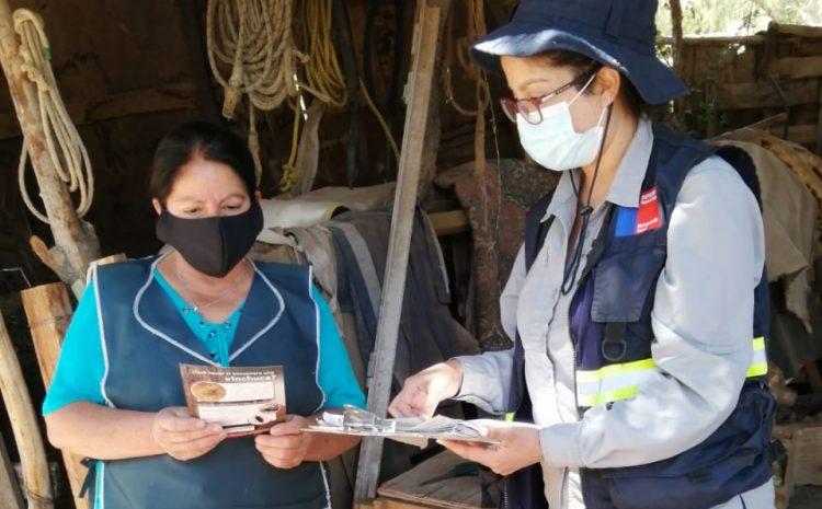 En el Choapa se refuerza el trabajo en terreno para prevenir la enfermedad de Chagas