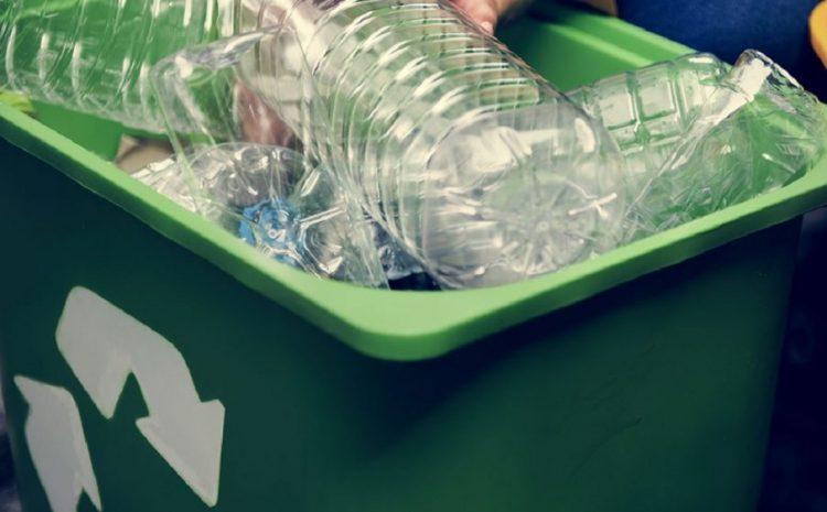Serie de charlas difundió conceptos de reciclaje en tiempos de pandemia