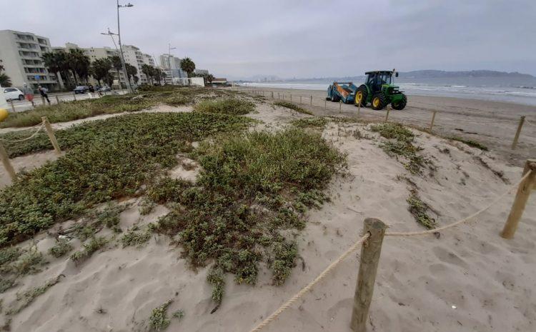 Dunas costeras de La Serena y Coquimbo serán protegidas y puestas en valor para frenar su deterioro