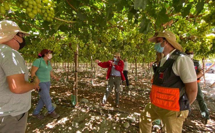 Dirección del Trabajo insta a proteger a trabajadores expuestos a radiación UV