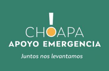 """Adaptarse a la pandemia: El rol clave del programa """"Choapa, Apoyo Emergencia"""""""