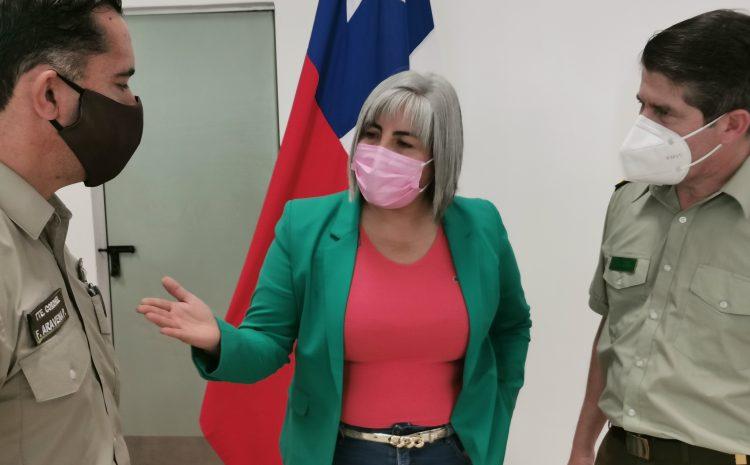 Seremi de la Mujer refuerza llamado a denunciar actos de violencia intrafamiliar durante cuarentena