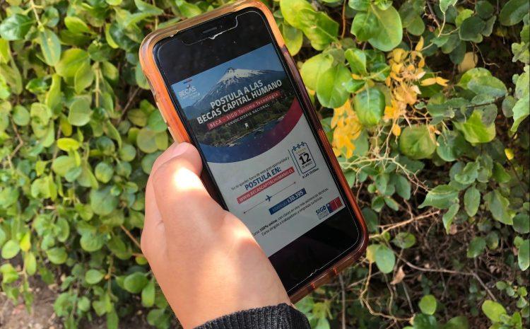 Exitoso programa de estrategias digitales reabre sus inscripciones para posicionar la industria del turismo chileno en el mundo online