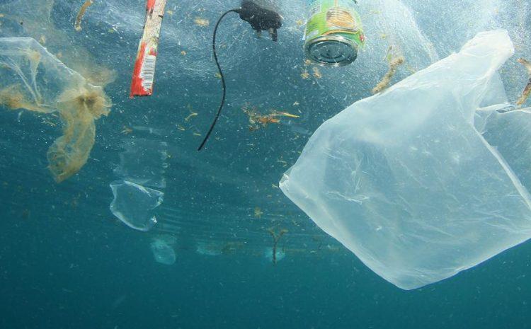 Invitan a participar en consulta ciudadana sobre Residuos Marinos y Microplásticos