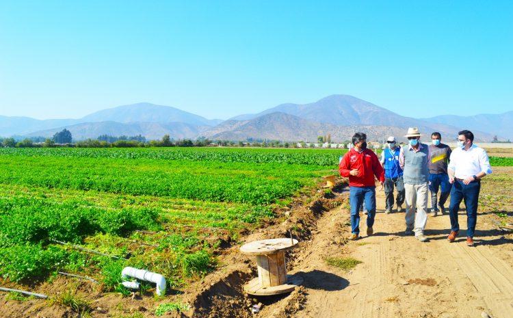 Refuerzan el llamado al sector Silvoagropecuario para participar en el VIII Censo Agropecuario y Forestal
