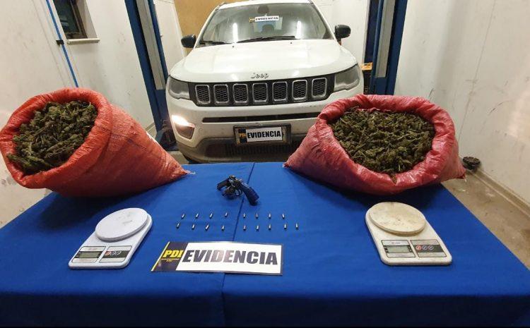 PDI logró incautar cerca de 144 kilos de Cannabis Sativa en la comuna de Los Vilos