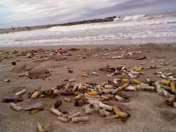 Comisión de Medio Ambiente aprueba prohibición de fumar en playas, ríos y lagos