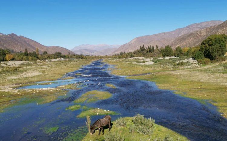 Caudales de río Choapa y Elqui registran valores críticos