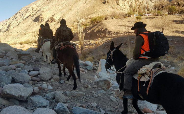 Inicia búsqueda de crianceros que se trasladaron al sector cordillerano de Huanta